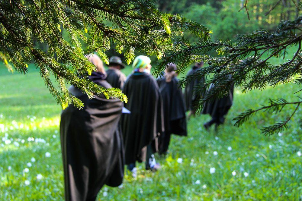 Waldness Urlaub im Almtal