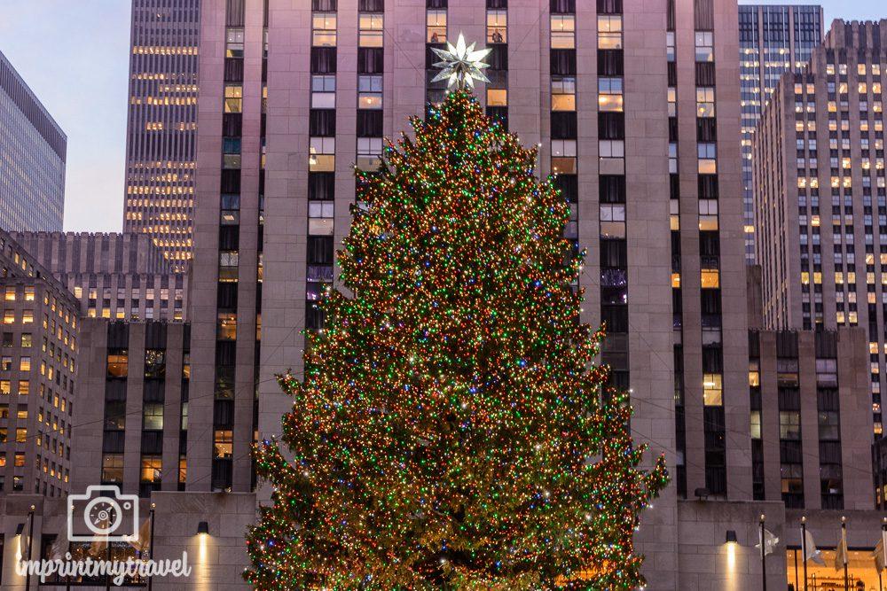 Weihnachtsbaum vor dem Rockefeller Center New York