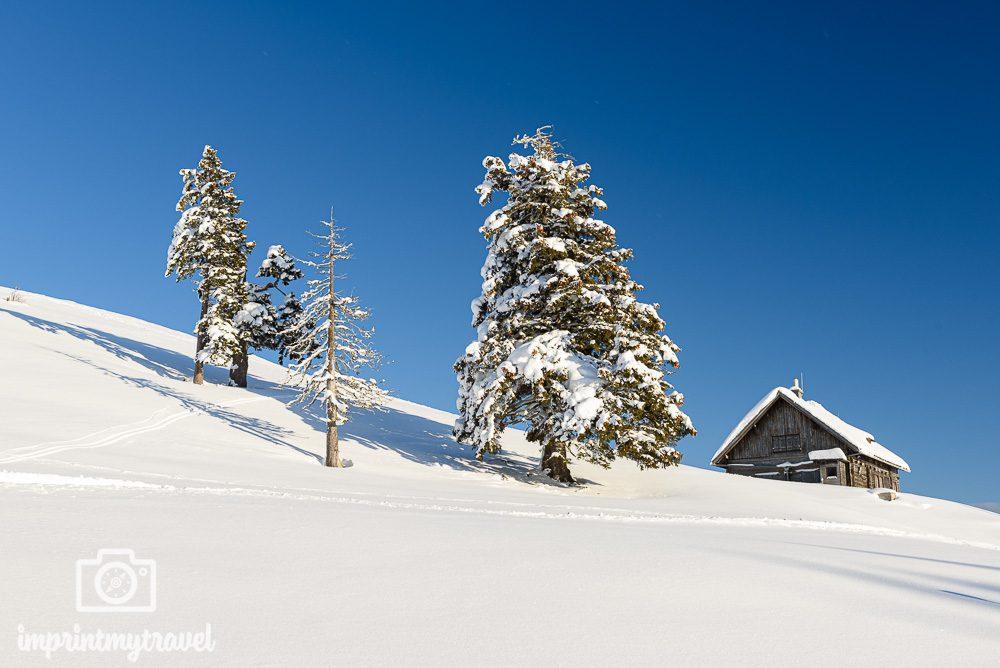 Fotografieren im Winter Polfilter