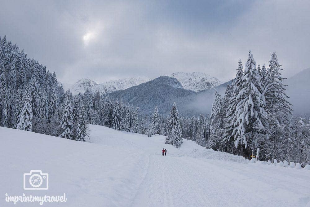 Fotografieren im Winter Belichtungskorrektur