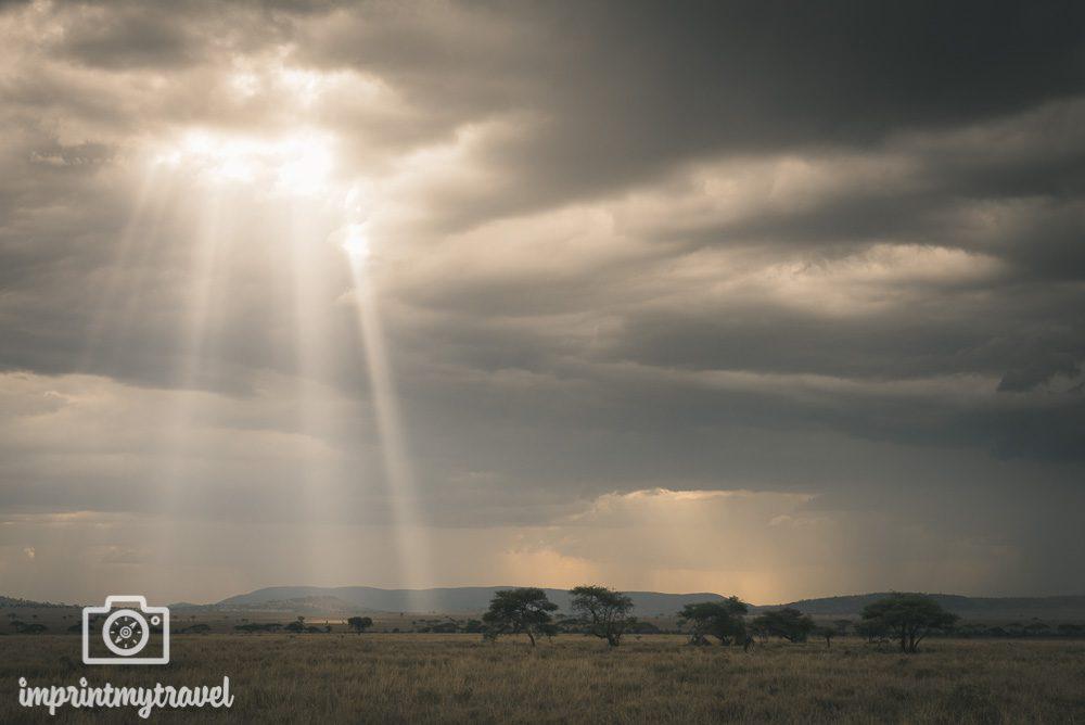 Fotoreise Tansania 2021 Serengeti