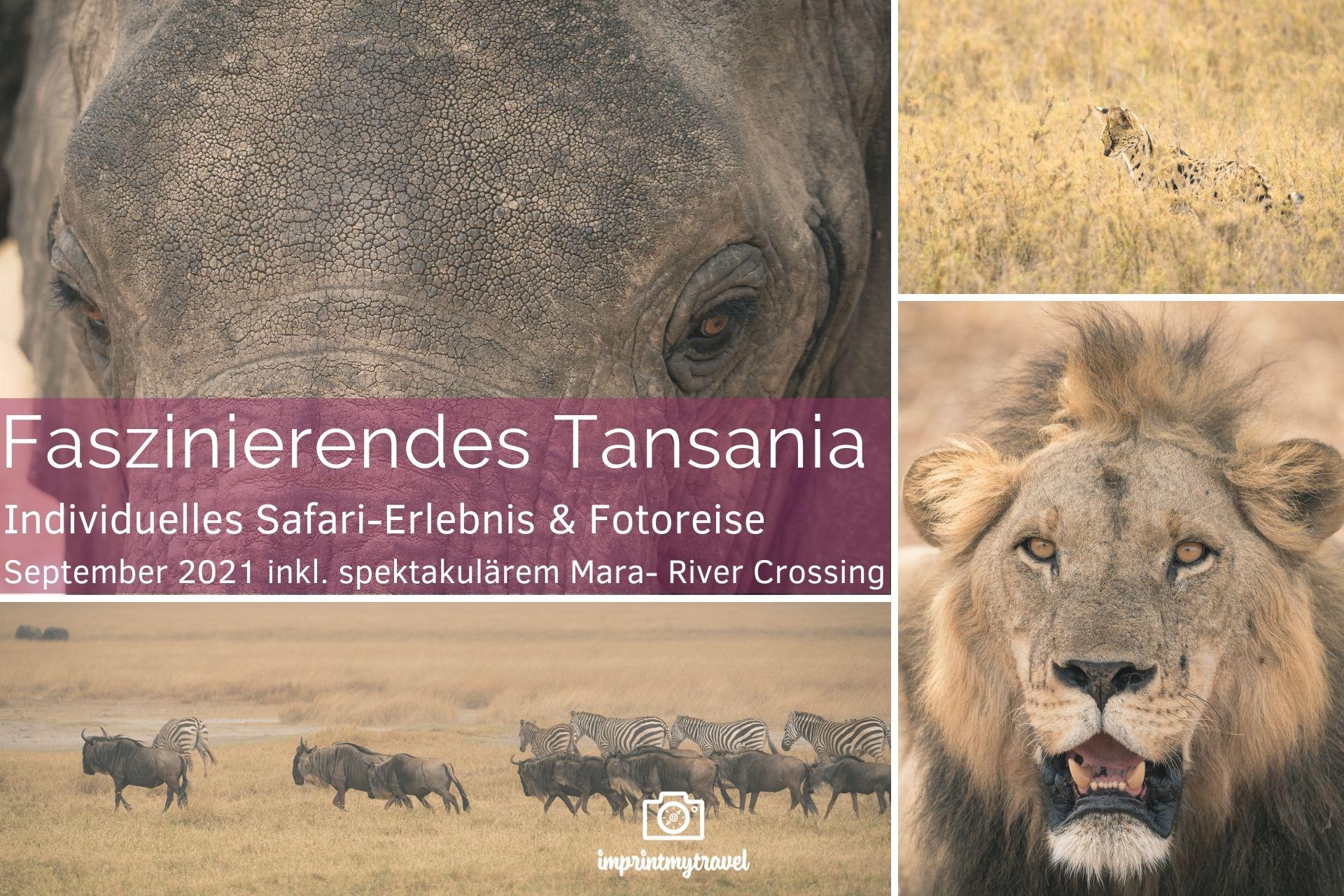 Fotoreise Tansania 2021 Titel