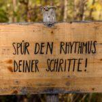 Die schönsten Wanderungen in Niederösterreich
