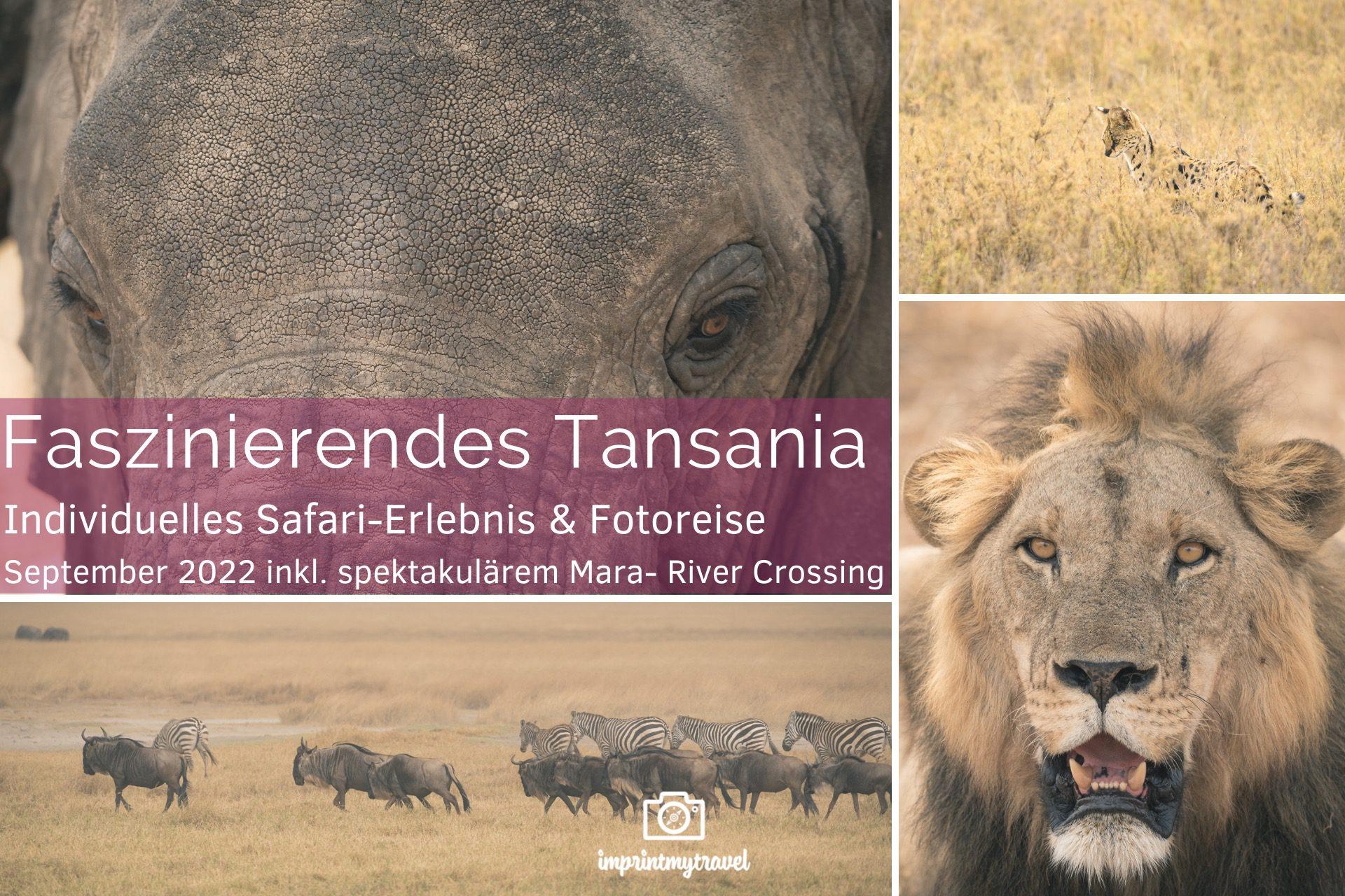 fotoreise tansania titel 2022