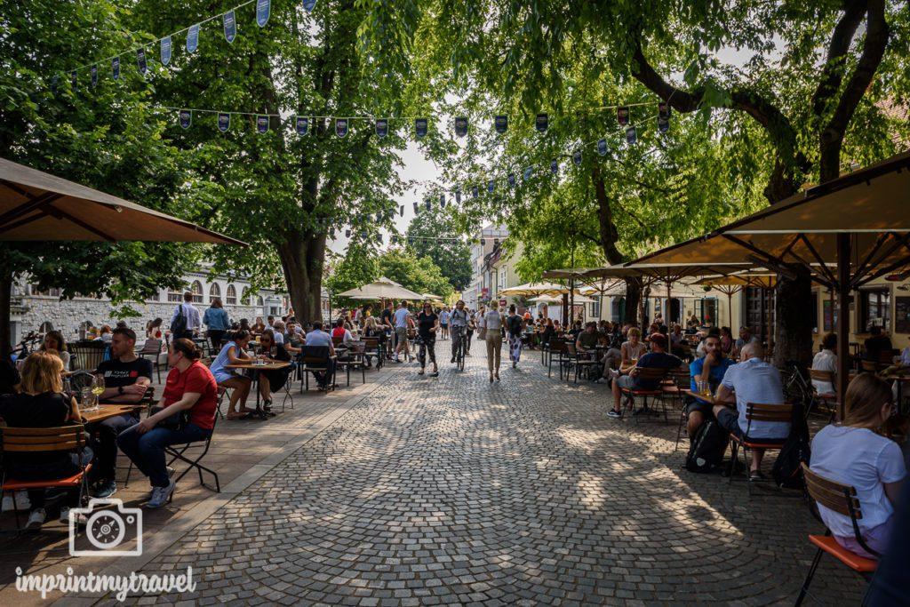 Ljubljana Sehenswürdigkeiten Promenade